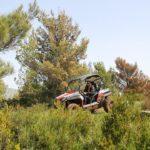 buggy adrenaline dubrovnik