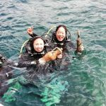 diving edivo amphora