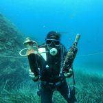 wines underwater edivo